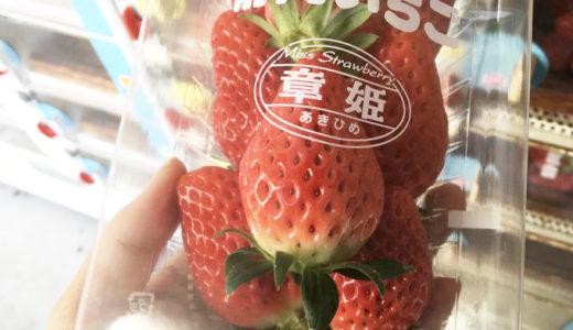 静岡の春のお楽しみ…いちごの自販機!