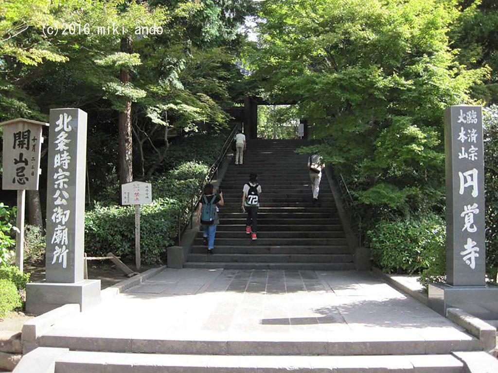 北鎌倉の深い緑に包まれた由緒あるお寺「円覚寺」