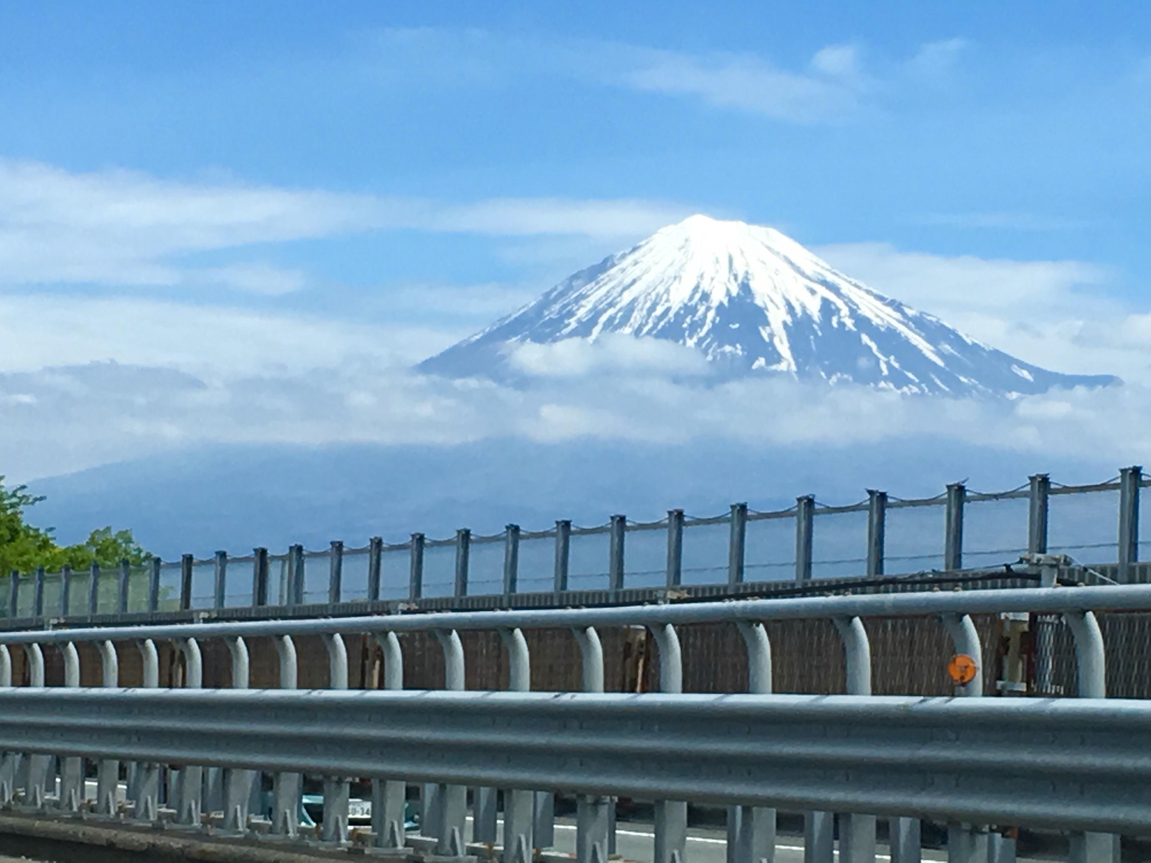 ご当地ナンバー「富士山ナンバー」で人気があるのは何番?