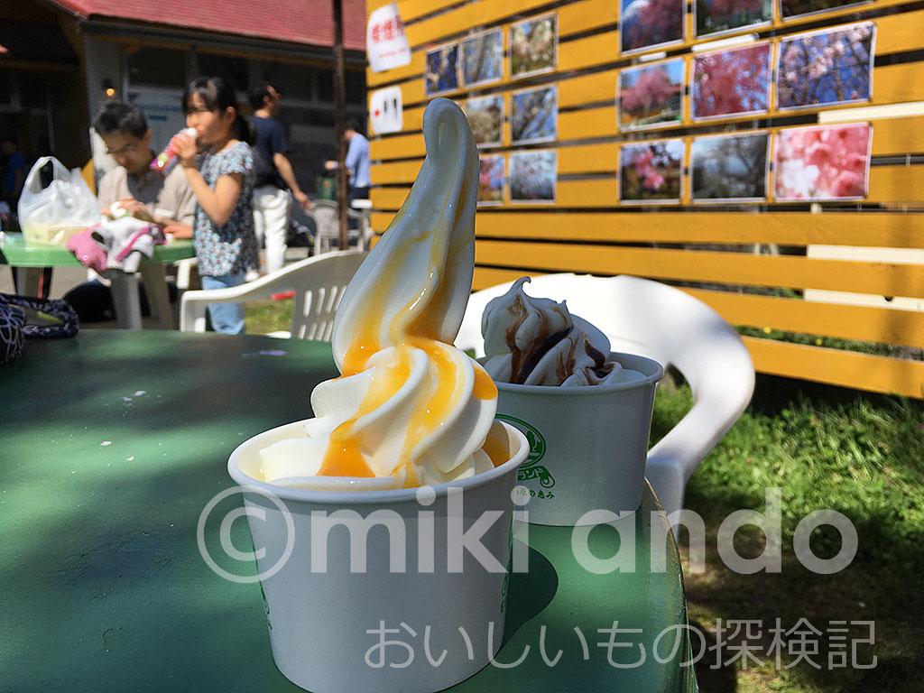 朝霧高原のソフトクリームが絶品!富士ミルクランド