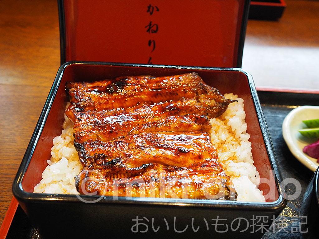 浜松の名店「かねりん」で味わう究極のうな重!