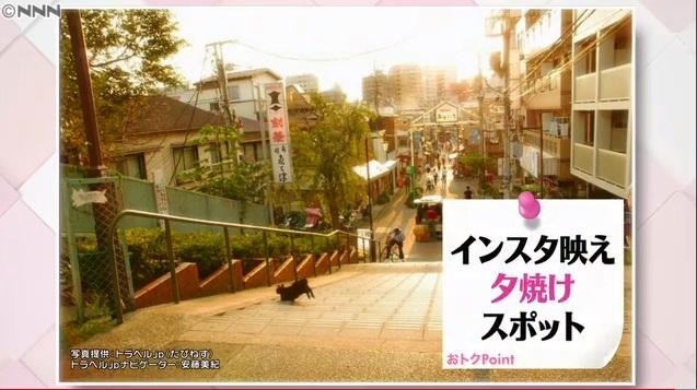日本テレビ「news every.」に夕焼けだんだんの画像提供